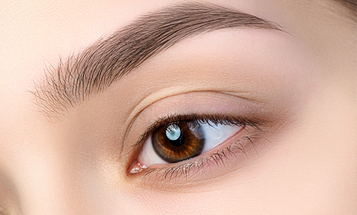 Eyebrows for men and Women